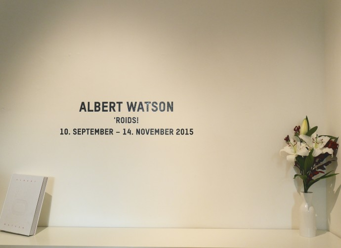 Albert Watson Reception Elusive Magaizine