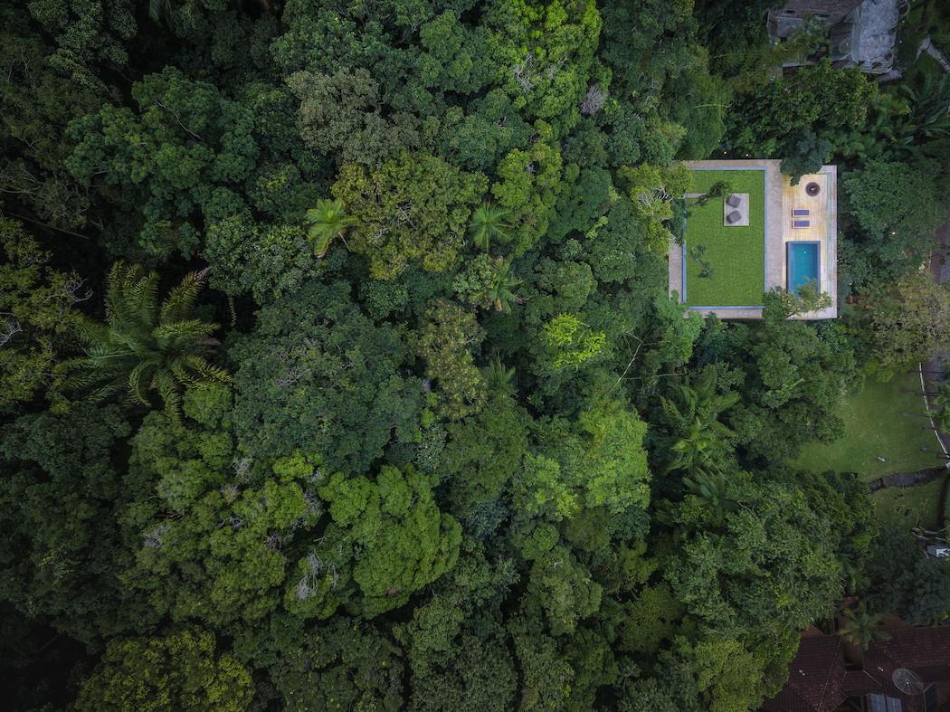 Jungle House : Studiomk27 -10